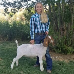 Delainey Nelson - Burlap & Barbed Wire 4H